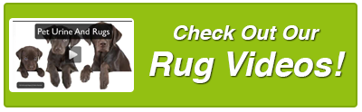 rug-video-button